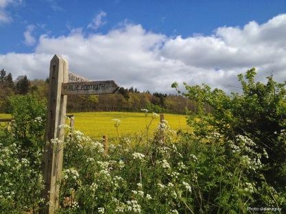 Image result for guildford river walk